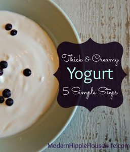 Yogurt - Pinterest