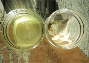 Whey (left) is the yellow-ish liquid extracted from yogurt, and is used in lacto-fermentation.