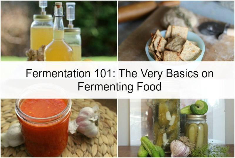 Fermentation 101: The Very Basics on Fermenting Food
