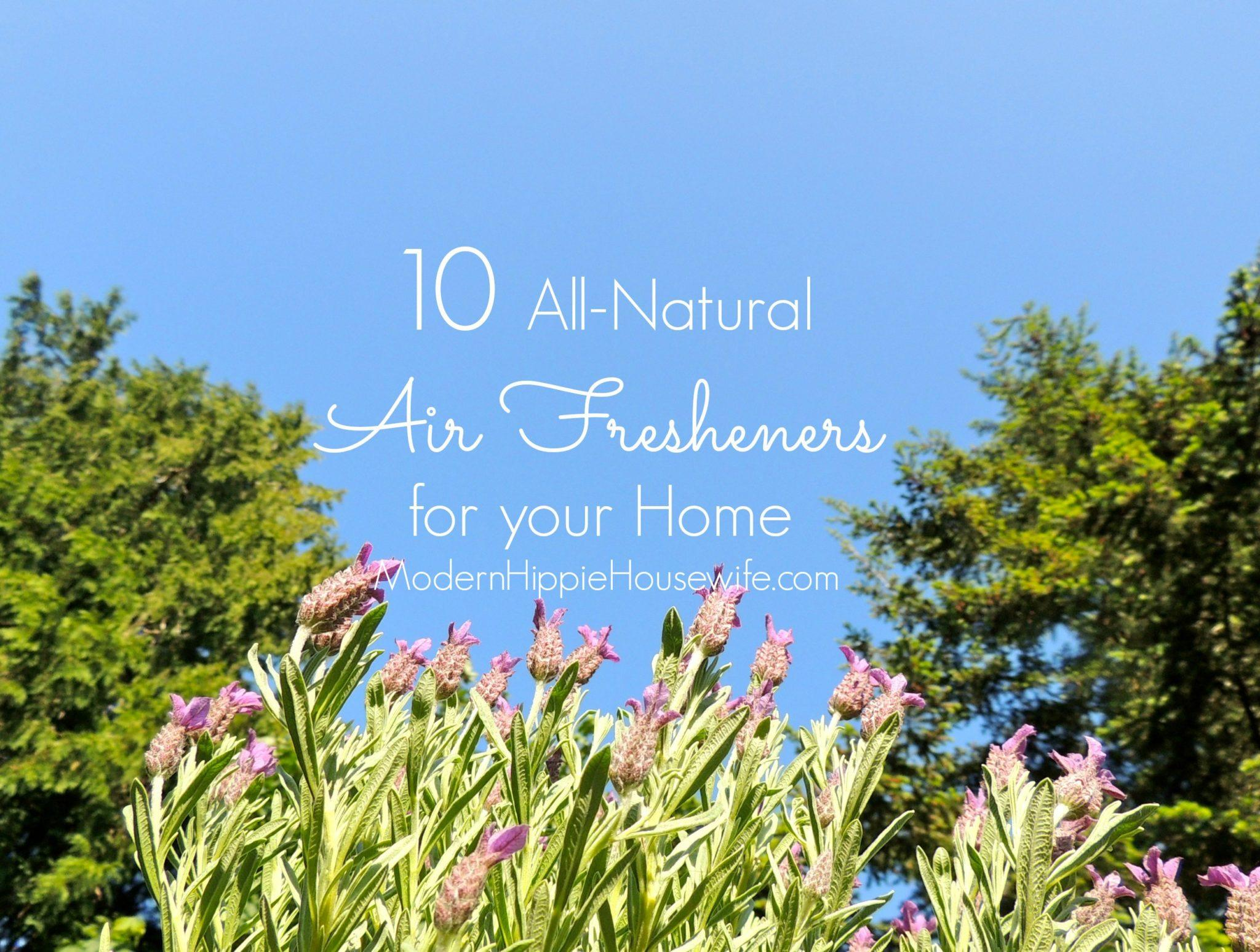 10 All-Natural Air Fresheners for your Home