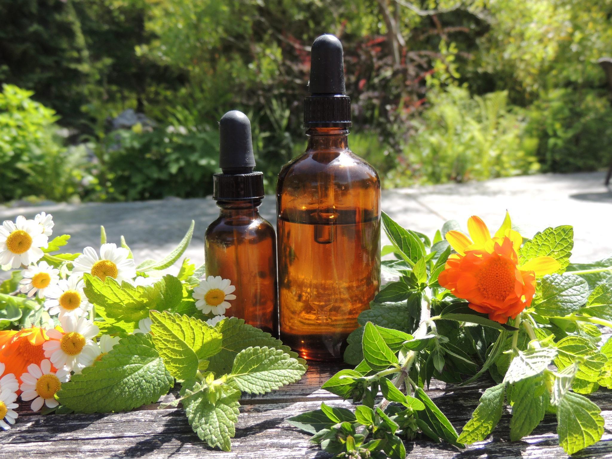 101 how to make a tincture modern hippie health wellness