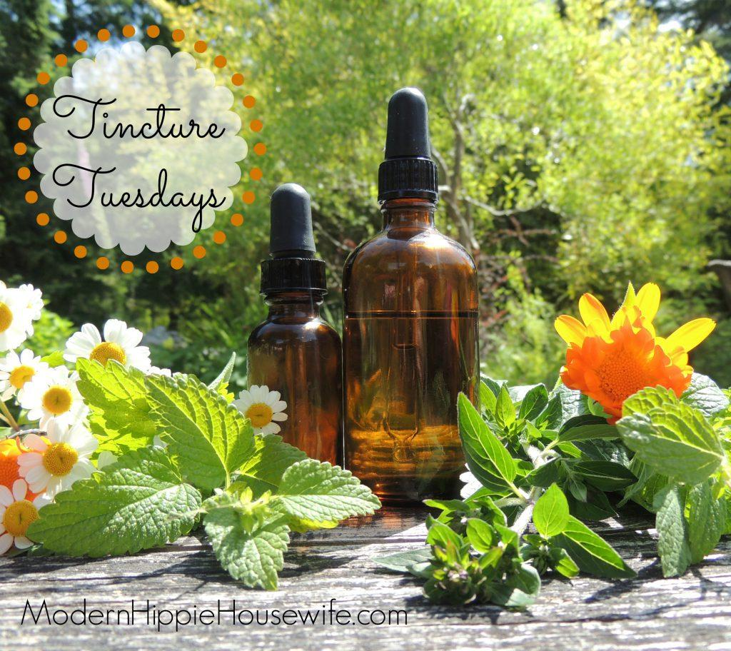 Tinctures Tuesday - Week 1