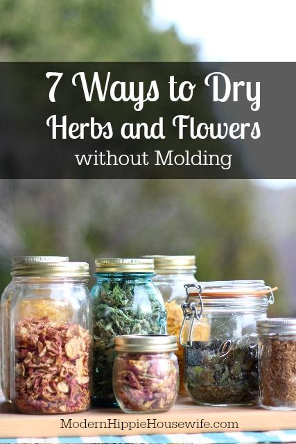 How to Dry Herbs - Pinterest