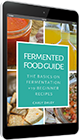 Fermented Food Guide: the basics + 19 beginner recipes