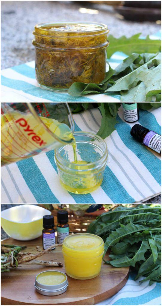 Dandelion Gardening Salve Recipe