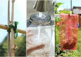 3 Awesome Uses for Mesh Produce Bags