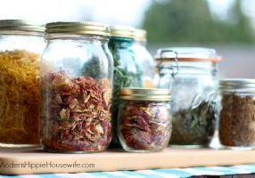 How to Dry Herbs & Flowers